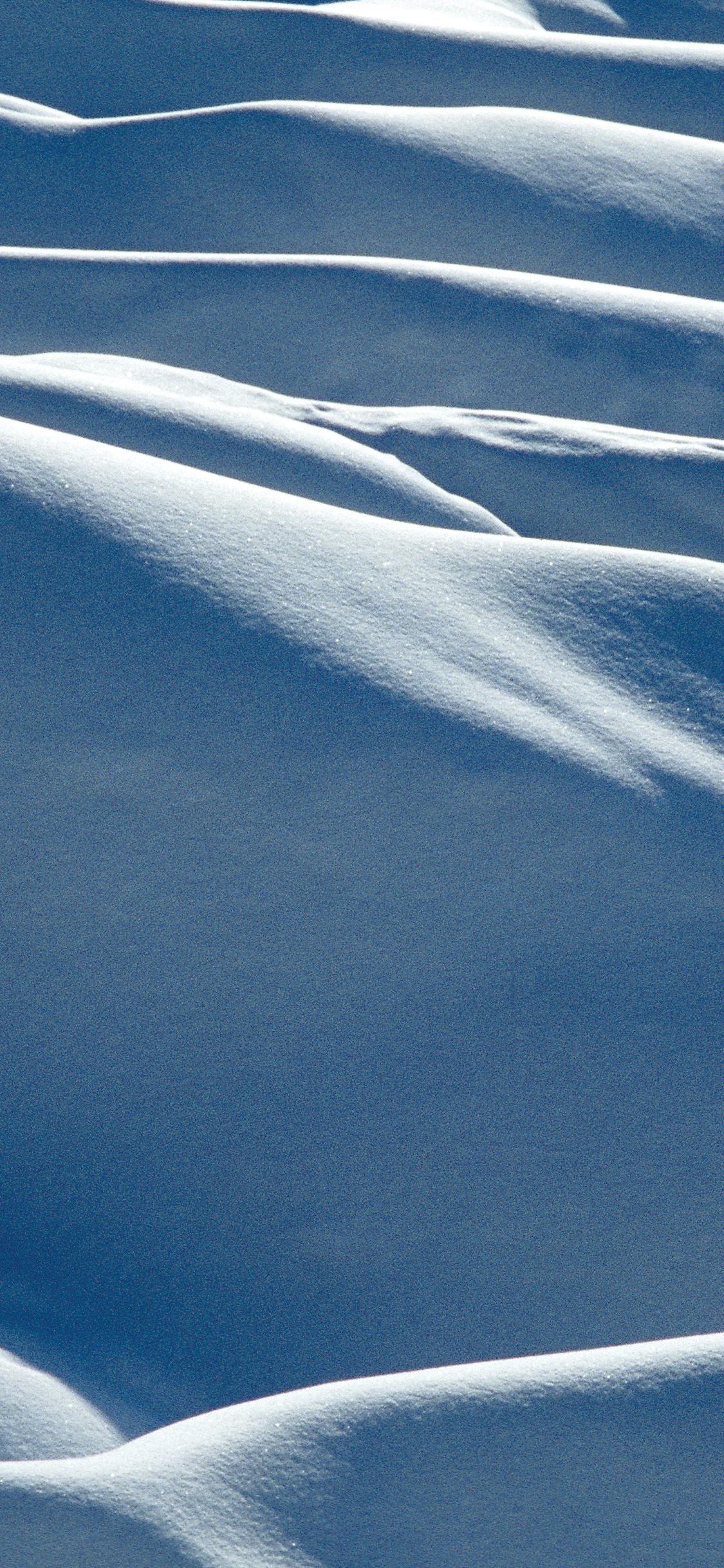 winter arctic mobile phone wallpaper
